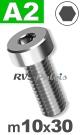 m10x30mm / per stuk - lage cilinderkopschroef A2