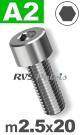 m2,5x20mm / per stuk - cilinderkopschroef A2